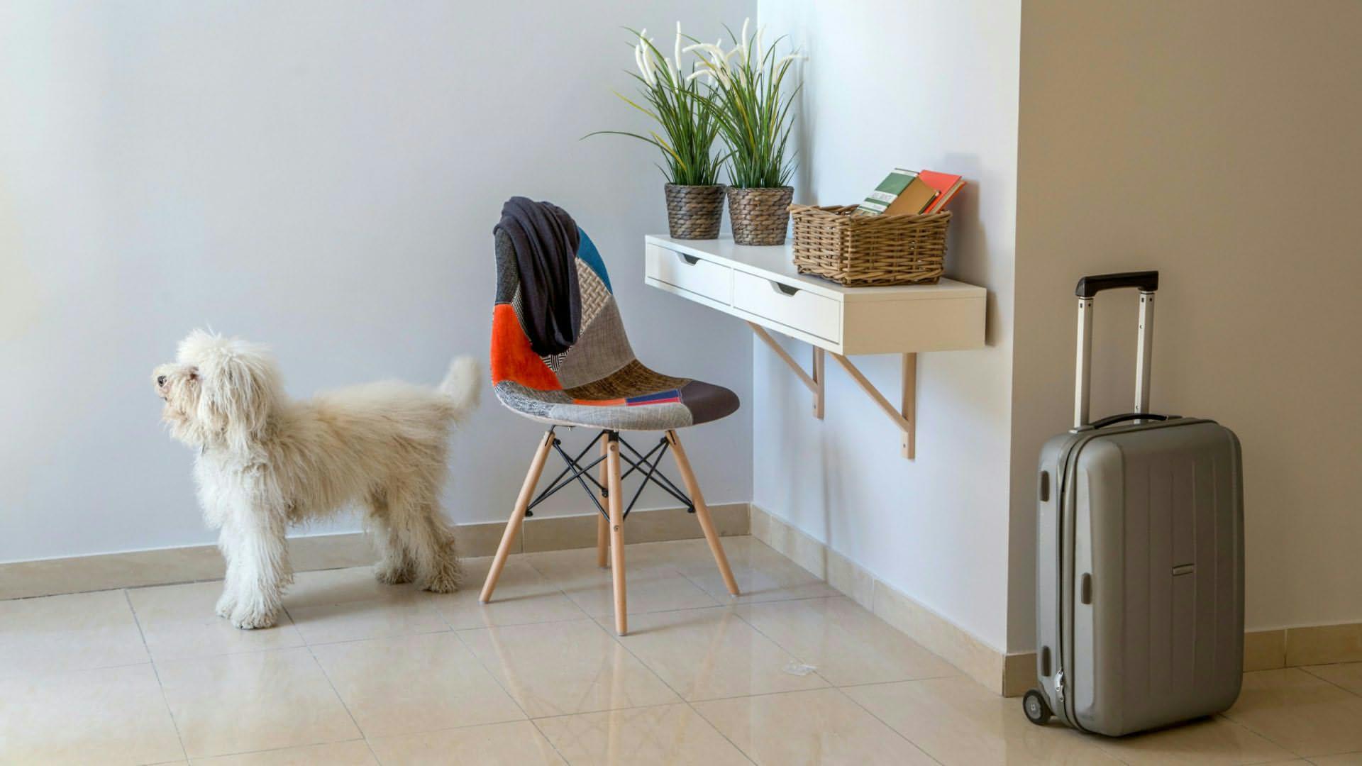 urban-garden-hotel-roma-habitaciones-4615